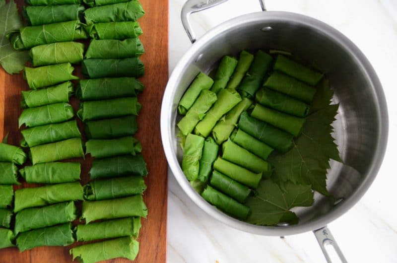 Vegetarian Grapeleaves, MaureenAbood.com