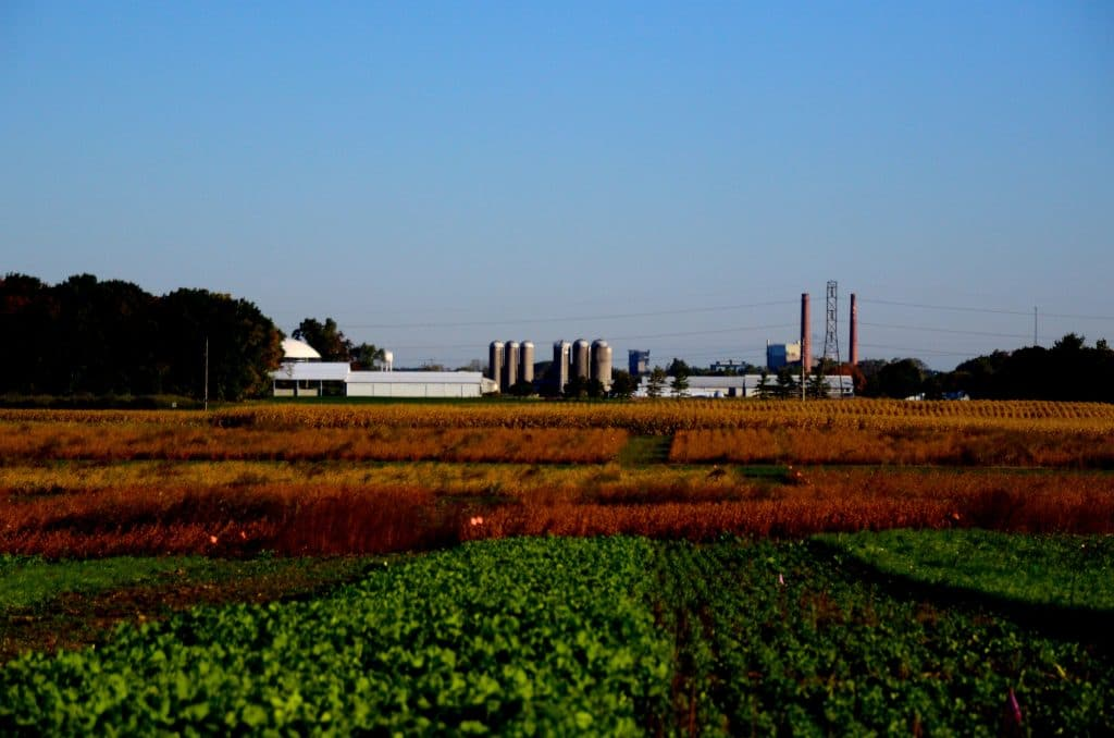MSU farms, Maureen Abood