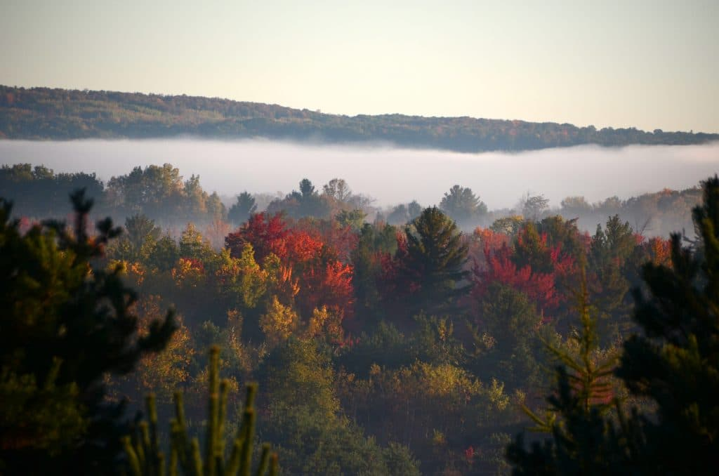 Pickerel Lake fall mist