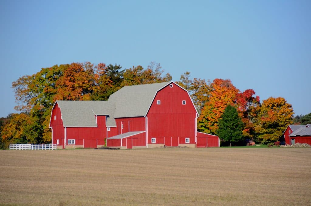 Sarahs favorite barn, Maureen Abood