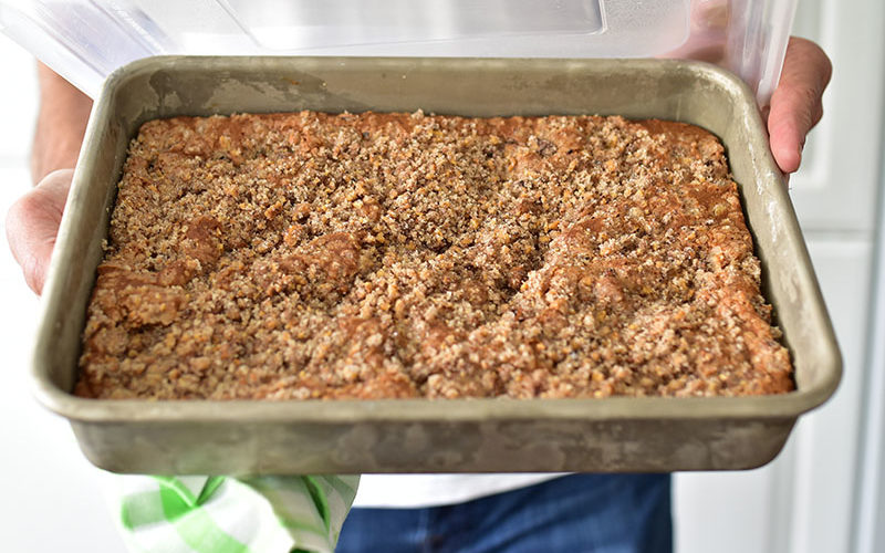 Rhubarb squares in a 13x9x2-inch pan, in Dan's hands with a green gingham napkin.