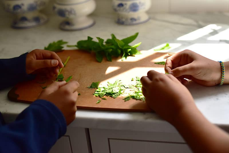 Picking mint from its stems with little hands, Maureen Abood.com