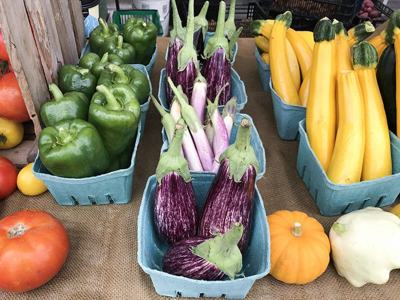 Eggplant at the farmers market, surrounded by squash, peppers, and tomatoes, Maureen Abood