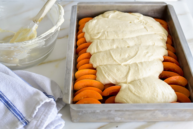 Cake batter over apricots in a pan