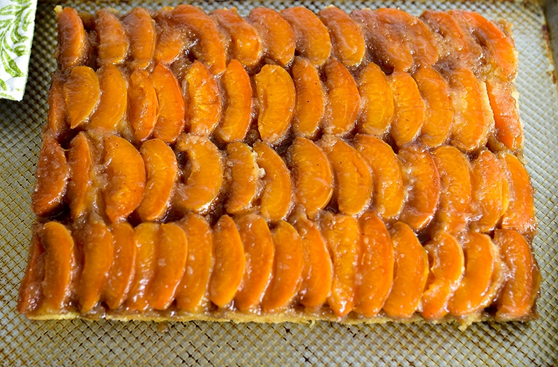 Apricot Upside Down Cake on a sheet pan